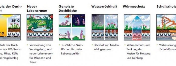 Vorteile_eines_Dachgartens