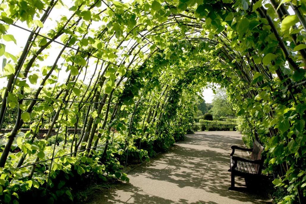 Schatten Fr Den Garten Ostsee Grten